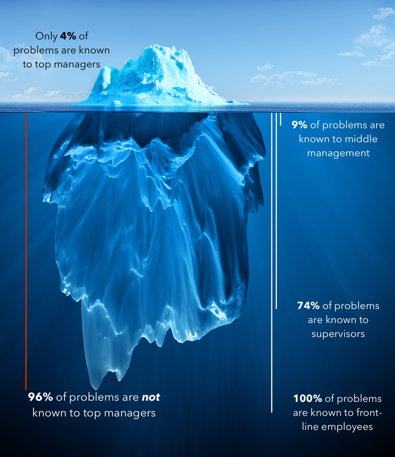 an iceberg with descriptions of the organization
