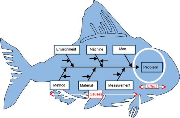 A Fishbone Diagram